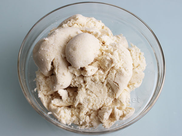 Okara - Nebenprodukt der Sojamilch